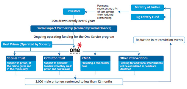 Figure 1 An example of a Social Impact Partnership [5]